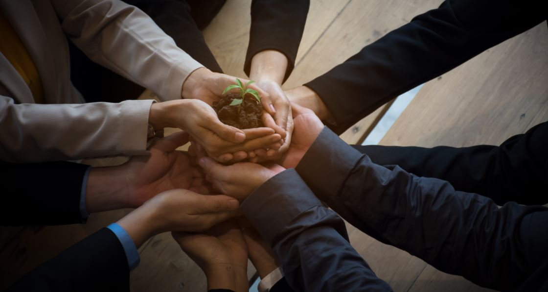a business team holds up a seedling representing a business helping it grow.